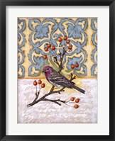 Framed Chilmark Finch