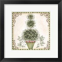 Framed Topiary II