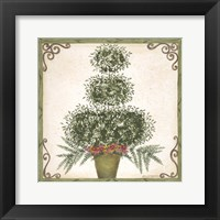 Framed Topiary III