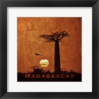 Framed Vintage Baobab Trees at Sunset in Madagascar, Africa