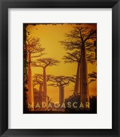 Framed Vintage Baobab Trees in Madagascar, Africa