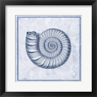 Framed Blue Nautilus B