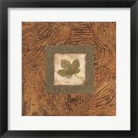 Framed Sedona Naturals B