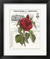 Framed Heirloom Roses A