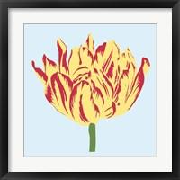 Framed Soho Tulip II