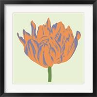 Framed Soho Tulip III