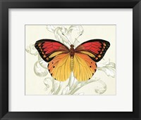 Framed Butterfly Theme III