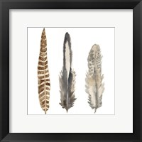 Framed Watercolor Plumes I