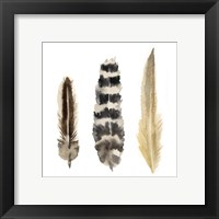 Framed Watercolor Plumes II