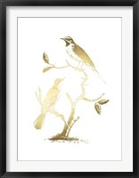 Framed Gold Foil Birds II