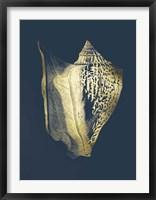 Framed Gold Foil Shell III on Cobalt