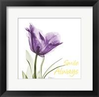 Framed Smile Always Tulip