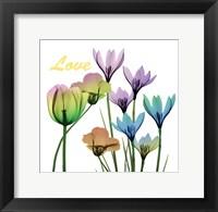 Framed Floral Rainbow Love
