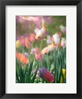 Framed Tulip Swim A