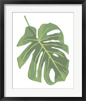 Framed Philodendron 2