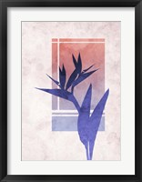 Framed Ombre Bird of Paradise Flower