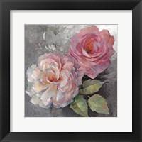 Framed Roses on Gray I