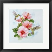 Framed Pink Hibiscus