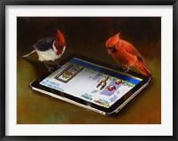 Framed Angry Birds