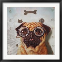 Framed Canine Eye Exam