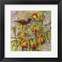 Framed Painted Bunting & Peaches