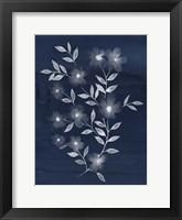Framed Flower Cyanotype II