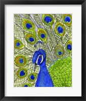 Framed Paisley B Peacock