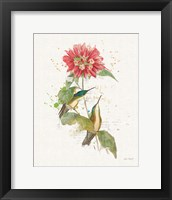Framed Colorful Hummingbirds I
