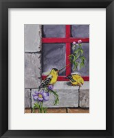 Framed Gold Finches
