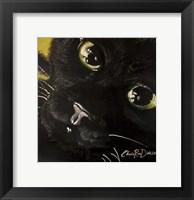 Framed Cat's Eyes