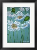 Framed White Poppies