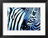 Framed That Zebra Look