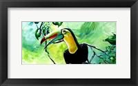 Framed Macaw