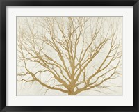 Framed Golden Tree