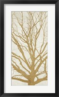Framed Golden Tree II