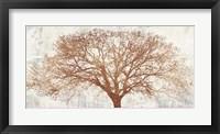 Framed Tree of Bronze