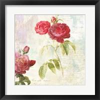 Framed Redoute's Roses 2.0 II