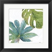 Framed Tropical Blush VII