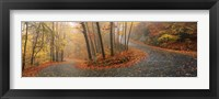 Framed Winding Road Through Monadnock Mountain, New Hampshire