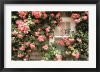 Framed Roses and home, Nantucket Island