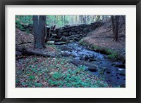 Framed Banks of Lamprey River, National Wild and Scenic River, New Hampshire