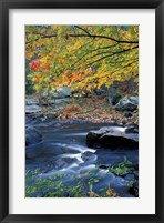 Framed Packers Falls on the Lamprey River, New Hampshire