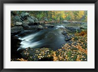 Framed Autumn Leaves at Packers Falls on the Lamprey River, New Hampshire