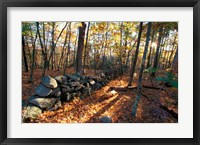 Framed Stone Wall, Nature Conservancy Land Along Crommett Creek, New Hampshire