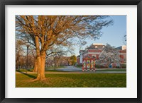 Framed Education, University of New Hampshire