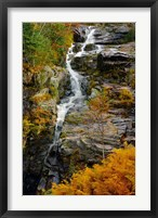 Framed Autumn at Silver Cascade, Crawford Notch SP, New Hampshire