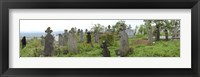 Framed View of Cemetery, Bradu, Arges County, Romania