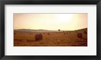 Framed Hay Bales, Tuscany, Italy