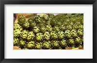 Framed Artichokes, Colts Neck Township, NJ
