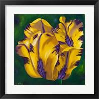 Framed Yellow Virus Tulip